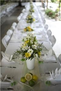 All Grown Up, LLC, Bronson