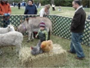 Traveling Petting Farm Zoo and Ponies for Parties, Jackson — We have small zoos and large zoos for small to large events in New Jersey.