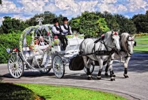 HighHorse Carriage Rides, Inc., Orlando