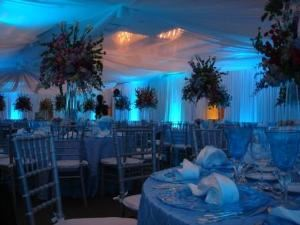ILE Productions, Fort Lauderdale — LED up-lighting cool blue