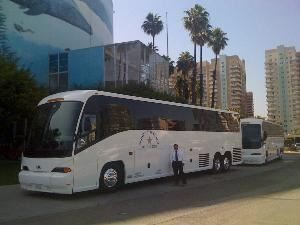Golden Star Coach, San Pedro
