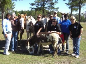 Hope-thru-Horses, Inc., Lumber Bridge — Hope-thru-Horses, team building, Fayetteville, NC area