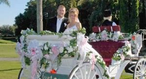 Gold Wedding Package, Seven Springs Golf and Country Club, New Port Richey — Romantic Photo Opportunity