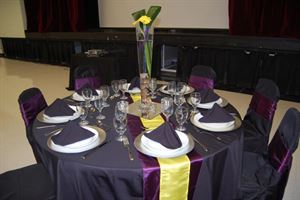 Silver Reception Rental Package, Gold Standard Events, Strathmore