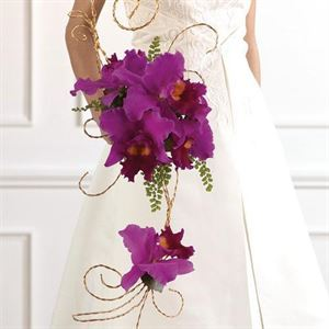 Saving, Saving, Saving!!  Bridal Consultation only! $25.00 per hour, A Petal From Above, Charlotte — purple Rain Bouquet