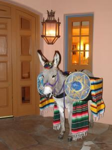 Haul N Ass Productions, Cave Creek — Miija at the Fairmont Princess Resort getting ready to greet her guest with Beer.  She is the Beer Burro