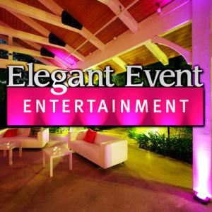 Elegant Event Entertainment Los Angeles Lighting, West Hills — Los Angeles Wedding Lighting