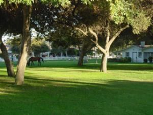 Cricket Field & Hunt Field, Calamigos Equestrian, Burbank