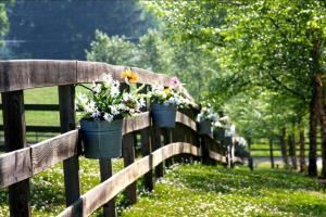 The Farm Rental (Saturday, up to 201 to 300 guests), The Farm, A Gathering Place, Candler