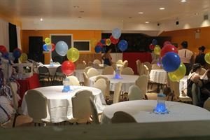 All Inclusive Baby Shower Package $1750 (up to 50 guests), Pelican Ville Banquet Hall, Bronx