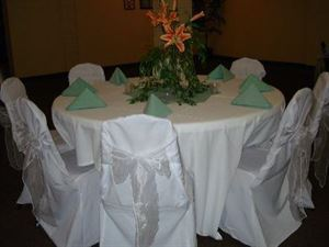 Ultimate Party Package (starting at $4,100), Celebrations Party Spot, Tucson