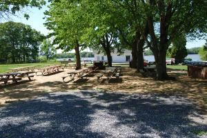 Picnic Area, Camp Letts, Edgewater