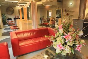 Circe Of Alexandria Salon Spa, Alexandria