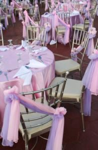 Parties, P & T Party Planners, Kearneysville