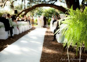 Spanish Moss Wedding Package, Hilton UF Conference Center, Gainesville — Green Ceremony Under the Oak Trees