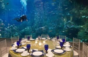 Banquet Room, Seattle Aquarium, Seattle