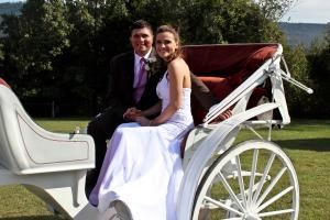 Wedding Package (starting at $7000), A Tennessee Dude & Guest Ranch, Dunlap