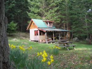 Cabin, Eagles Nest Retreat, Galiano — The cabin is quite separate from the main house and very private.