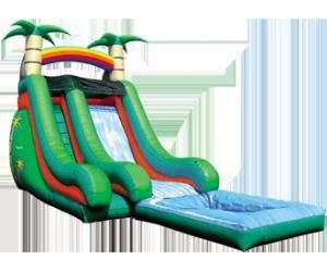Wet N Wild Party Package, Astro Jump Of Riverside, Riverside — water slide.JPG