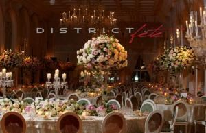 Signature Wedding Package, District Fete, Washington — Weddings allow us at District Fete to use our imagination enhancing your concept into a masterpiece. It's your special day and we ensure that every  moment is magical.