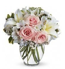 Arrive in Style, Agape Flowers & Gifts, Gaithersburg — Arrive in Style