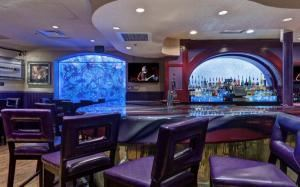 Bar Area, Hard Rock Cafe, Miami