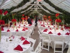 Reception Packages Starting at $2800, Buffalo And Erie County Botanical Gardens, Buffalo