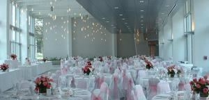 Grand Ballroom, Embassy Suites Tampa - USF/Near Busch Gardens, Tampa