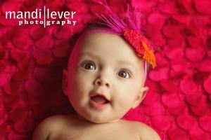 Mandi Lever Photography