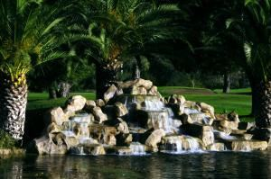 Wedding Ceremonies, San Vicente Golf Resort, Ramona — One of our wedding sites is the 18th hole waterfall on our golf course.  More options are available for your very special day.