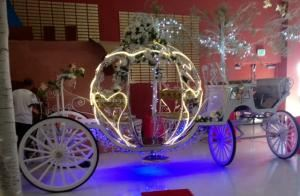 Cindy Cinderella Carriages