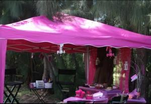 Pink Tiara Events