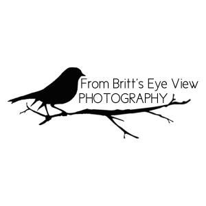 From Britt's Eye View Photography