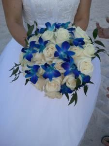Florida Weddings Online