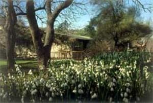 Gardens Conference Room, Botanic Gardens at University of California, Riverside