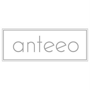 Anteeo Events