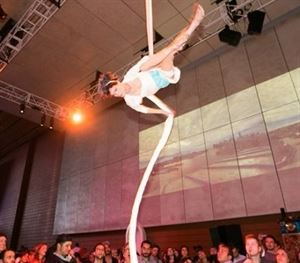 Robin Lynch, Aerialist