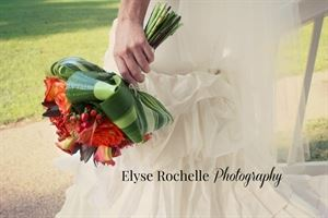 Elyse Rochelle Photography