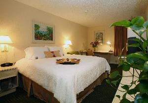 GUEST ROOM, Hampton Inn Daytona Speedway-Airport, Daytona Beach