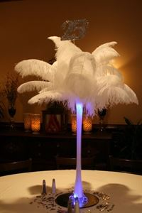 ShatataEvents Ostrich Feathers Rental