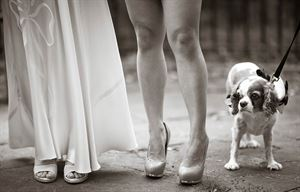Laurie Rhodes | New York Wedding Photographer