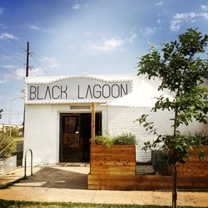 Black Lagoon: Art + Yoga - Central Austin Art Gallery & Event Space, Black Lagoon: Art + Yoga, Austin — Unique and intimate, Black Lagoon is an Art Gallery & Event Space with monthly art exhibits that add a cool artistic element to any private event. In business since in 2010, we are located in the Central Austin Hyde Park Neighborhood just minutes from downtown.