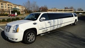 A1LIMO & TOURS LLC