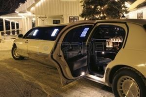 Top Cat Limo