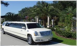 Daytona Limos, Palm Coast