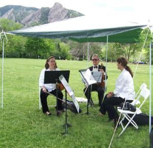 Ptarmigan String Quartet, Denver — Ptarmigan String Quartet is a group of four Professional Musicians who have performed for hundreds of Weddings and Special Events over the past twelve years!  Ptarmigan serves Denver, Boulder and surrounding mountain areas.