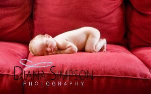 Diana Simpson Photography, Hixson — Diana is a maternity, child & newborn on-location photographer.