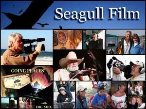 "Seagull Film Incorporated, Gulf Shores — Formerly Alternative Video Productions, Seagull Film provides both production and post production services.  Michael Sims is a successful ""Director of Photography"" and ""Editor"" with the experience and training necessary for professional, quality, Video Productions including: