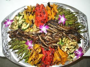 The Chef And Gardener Catering, Saco — Grilled Vegetable Display