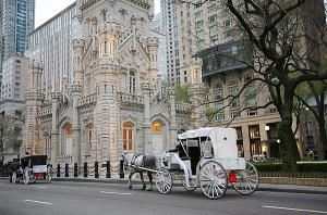 Chicago Horse & Carriage LTD